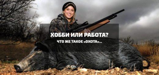 что такое охота